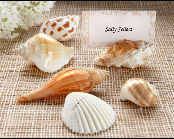 """Shells by the Sea"" Authentic Shell Place Card Holder with Matching Place Cards (Set of 6)"