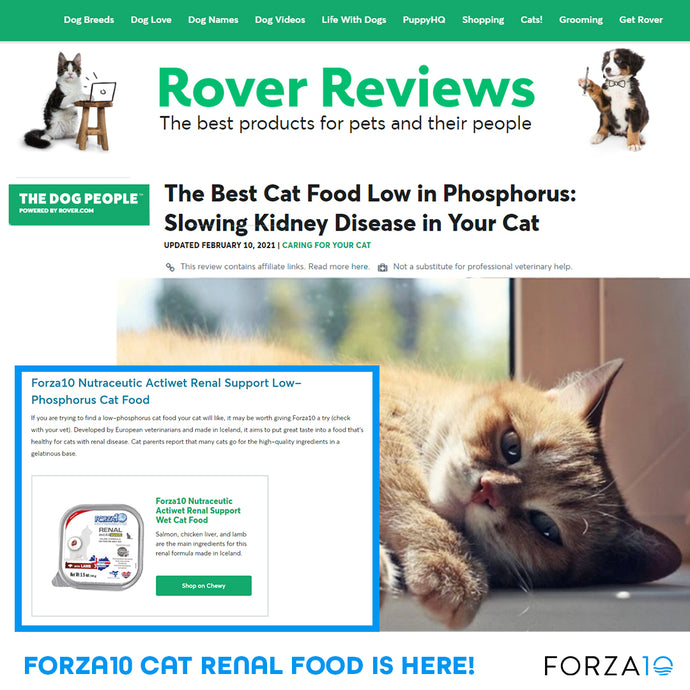 Rover Reviews lists Forza10 as one of the Best Cat Foods for Kidney Support