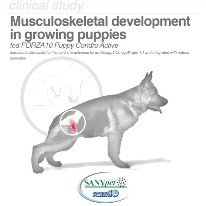 Musculoskeletal development in the growing puppy