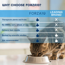 Load image into Gallery viewer, FORZA10 ACTIVE KIDNEY RENAL DRY CAT FOOD