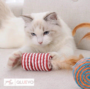Cat Toy Set Luscious Feathered Tail Vibrant Collection