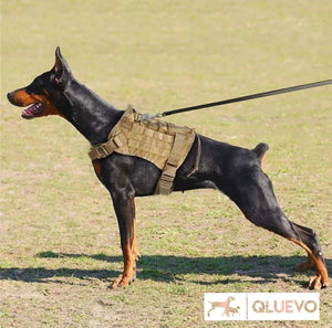 Dog Training & Hunting K9 Harness