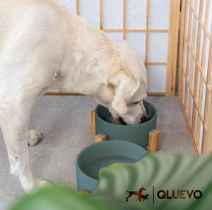Stable Pet Food & Water Bowl Stand