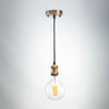 Brass Metal E27 Pendant with G125 Round LED 8W Bulb | LED light globes | Vintage LED