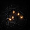 Festoon Lighting Black