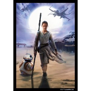 Star Wars - Rey Art Sleeves