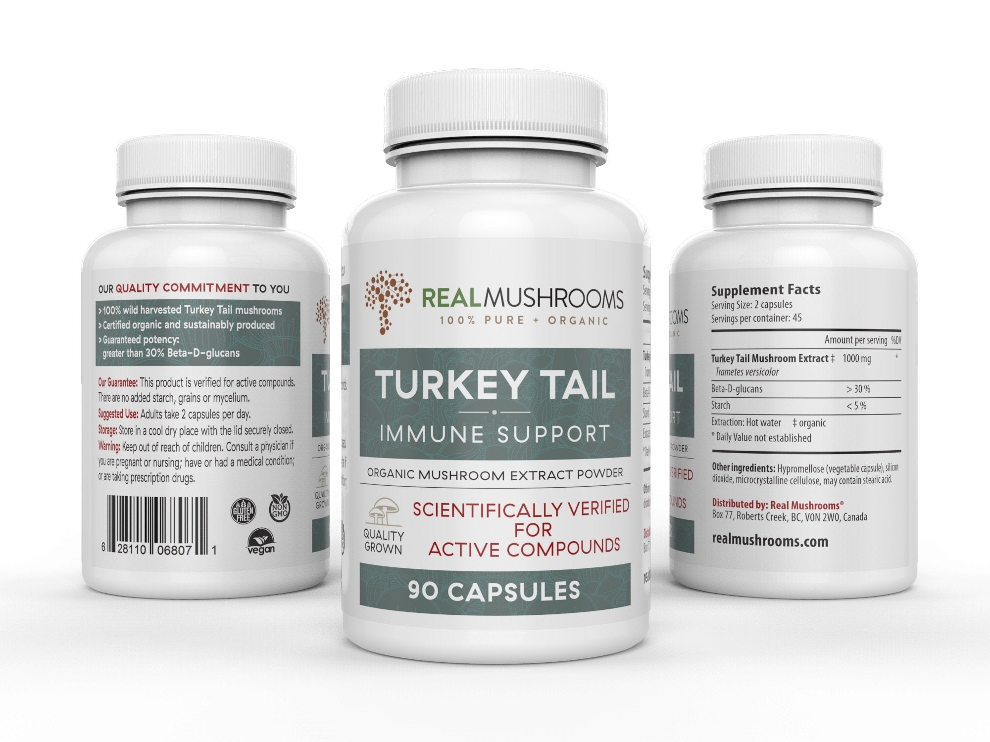 Turkey Tail Extract - Capsules