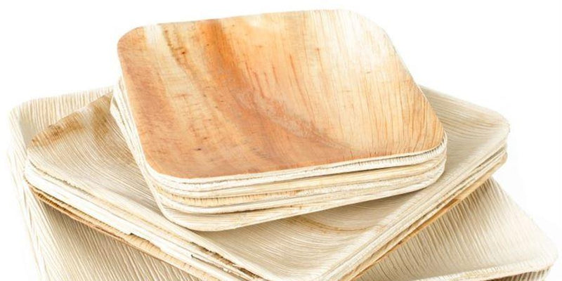 Compostable Palm Leaf Plate