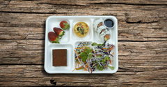 Gluten free Bento Lunch for One