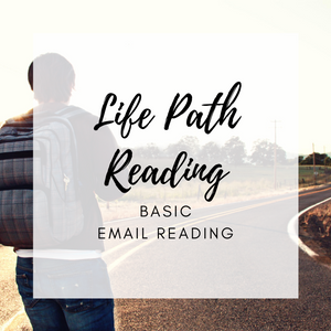 Life Path Basic Email Reading (Path Check)