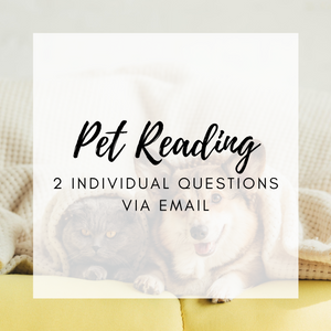 Pets: 2 Questions Email Reading