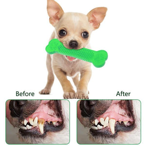 Bone-shape Dental Care Toy - Whiskerr