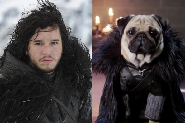 'Game Of Thrones' Animal Version Characters ( Photos)