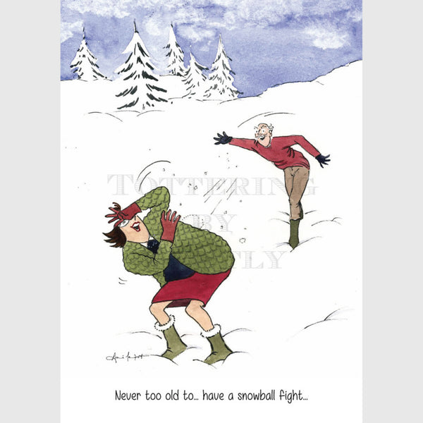 Tottering by Gently Christmas Card Pack of 5 Snowball fight