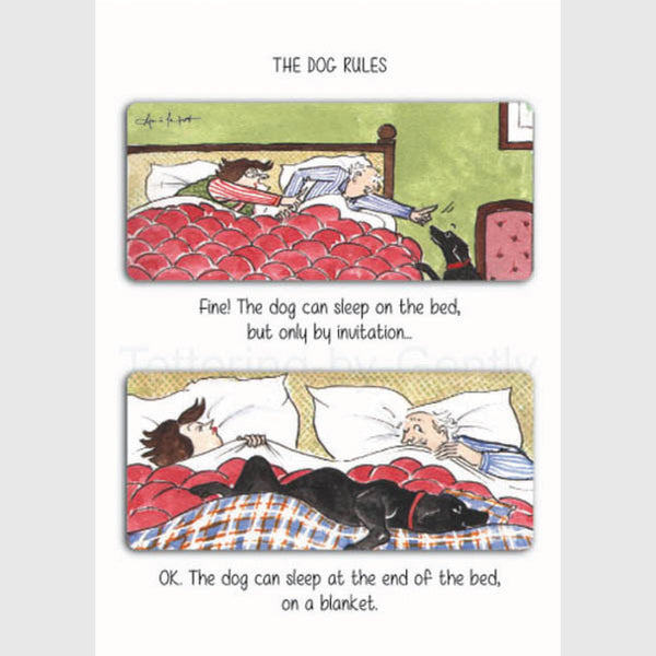 The dog can sleep ON the bed - Greeting card