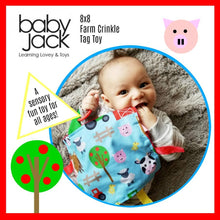 Baby Jack and Company - Farm Crinkle Tag Square 8x8 Baby Valentine's Toy