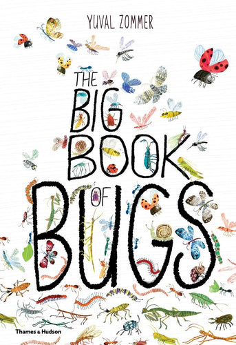 Big Book of Bugs - Hardcover