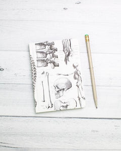 Notebook: Case Study-Anatomy: Mini Hardcover
