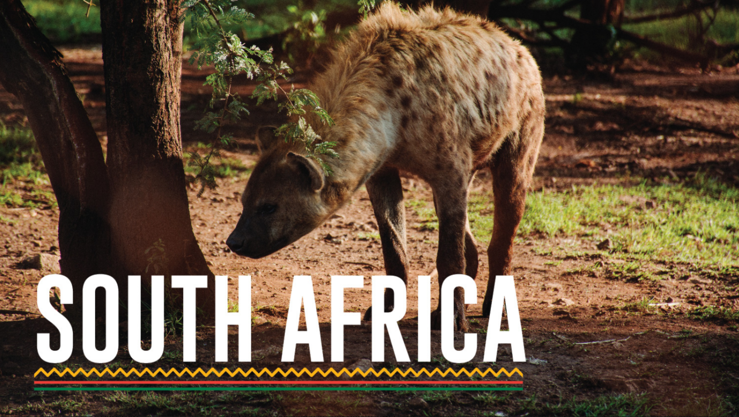 South Africa Luxury Safari Vacation package