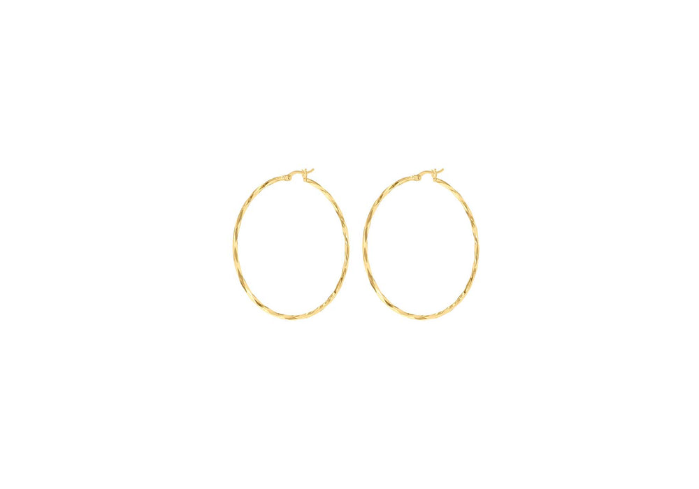 Load image into Gallery viewer, 9ct Gold Diamond Cut Hoop Earrings - Diana O'Mahony Jewellers