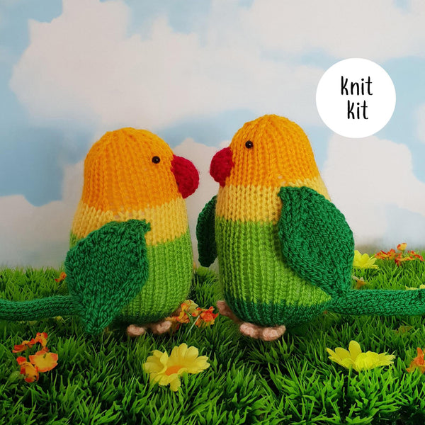 Love Birds knit kit
