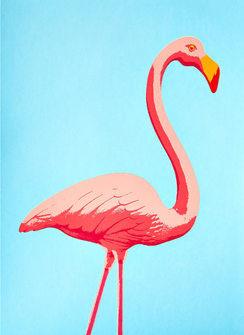 Fernando Flamingo greetings card - Inspired