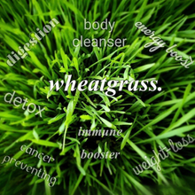 Load image into Gallery viewer, Organic Wheatgrass Nutri-Shots
