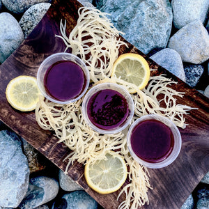 Wildcrafted Sea Moss Nutri-Shots -You Pick