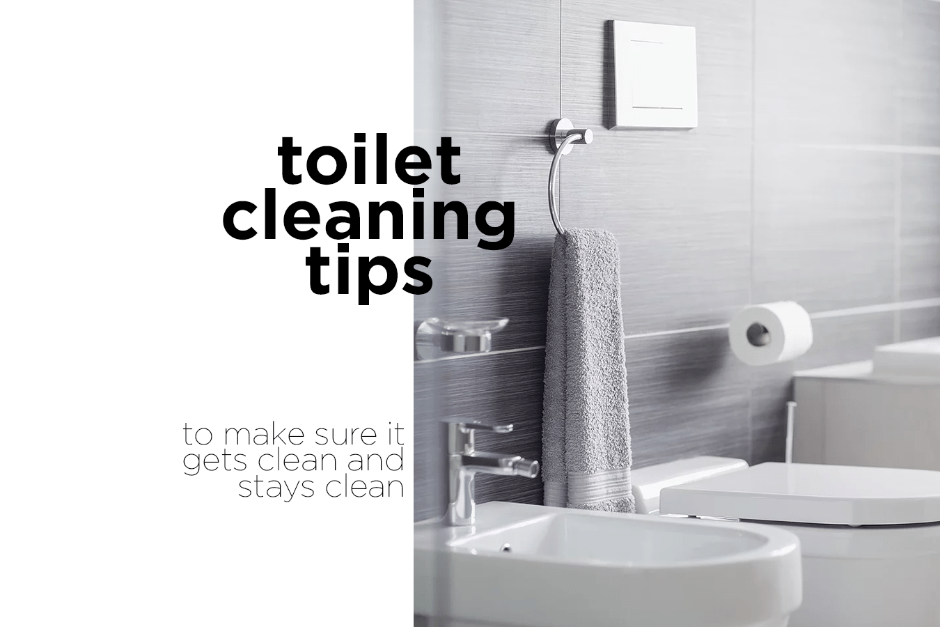 Toilet Cleaning 101 - Painless & Easy