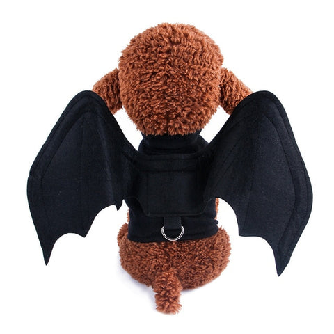 Cute Batwing Harness