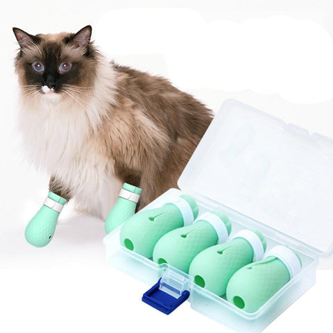 Anti Scratch Cat Grooming Shoes