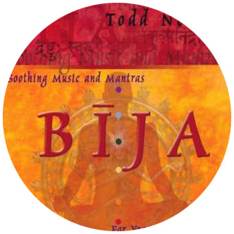 Bija by Todd Norian (Music Compilation CD)