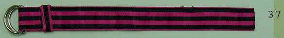 50 Grosgrain Ribbon Bands(Stripe)
