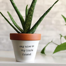 Load image into Gallery viewer, say aloe to my little friend planter