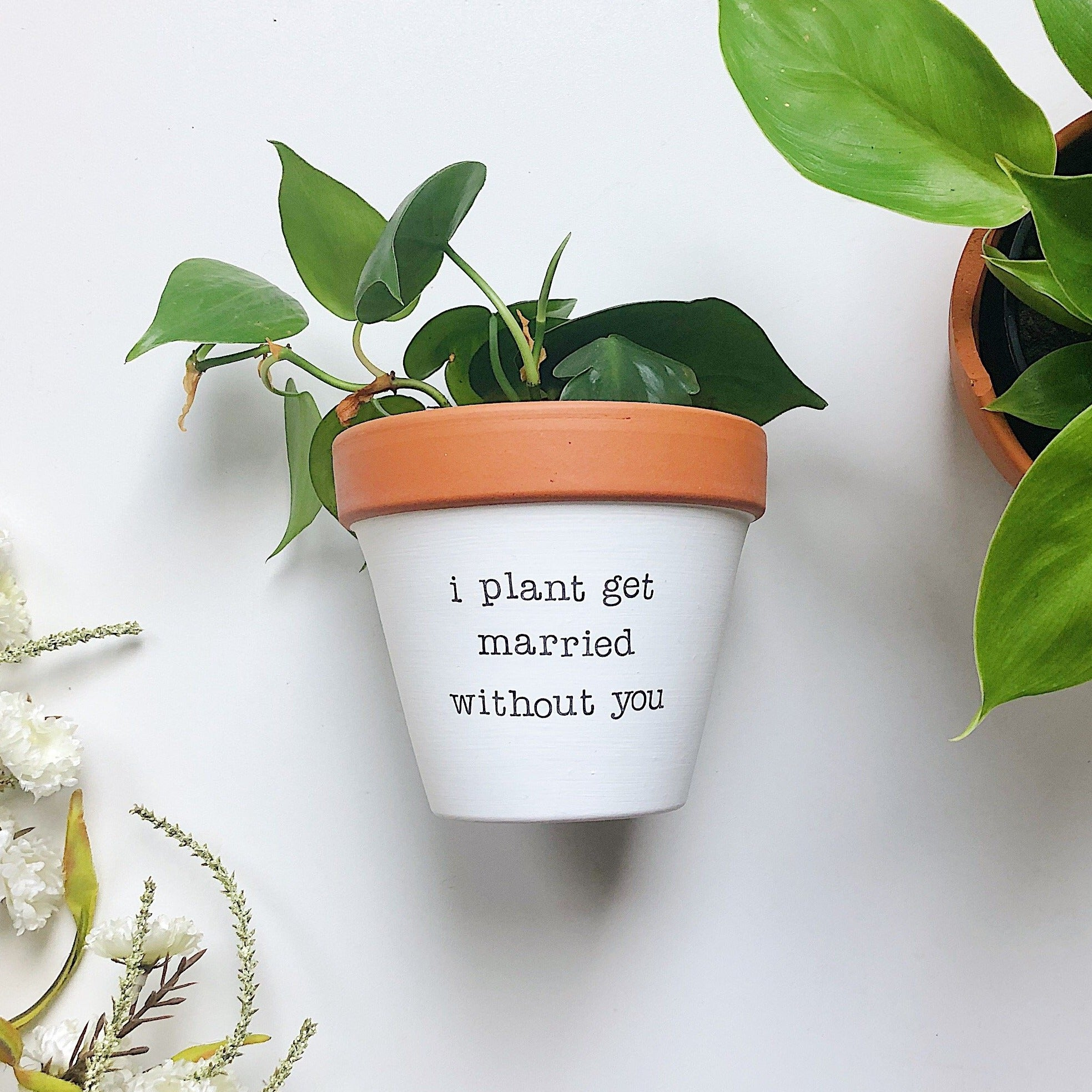 i plant get married without you planter