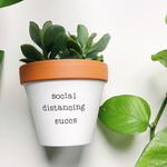 Load image into Gallery viewer, social distancing succs planter