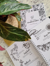 How To Draw Woodland Edition | Book - Felicity & Ink