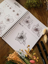 How To Draw Set - Garden Flowers & Woodland Edition - Felicity & Ink