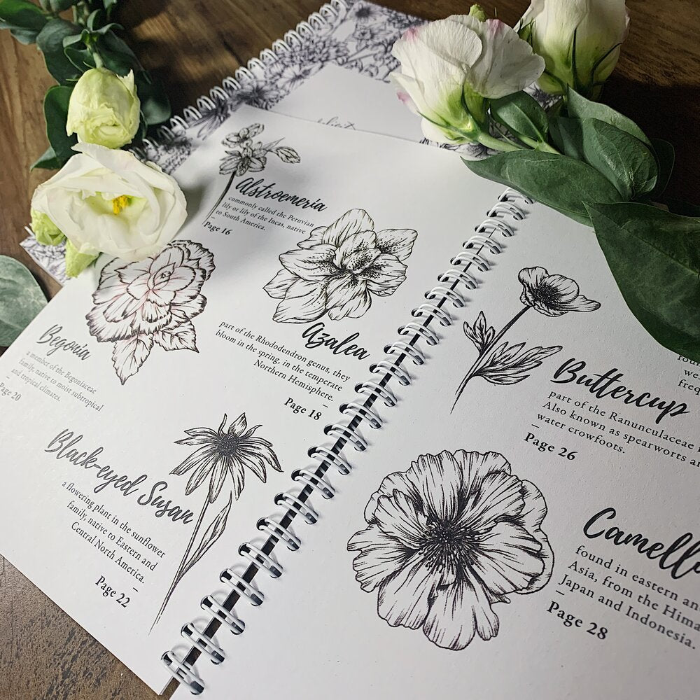 How To Draw Garden Flowers | Book - Felicity & Ink