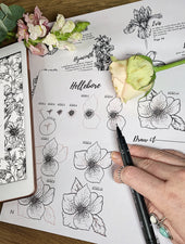 How To Draw Bundle: Woodland, Garden & Autumn Flowers Ebooks | Digital Download - Felicity & Ink