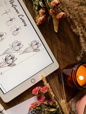 How To Draw Autumn Flowers Ebook | Digital Download - Felicity & Ink