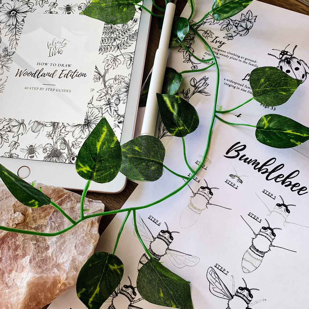 How To Draw Woodland Edition Ebook | Digital Download - Felicity & Ink