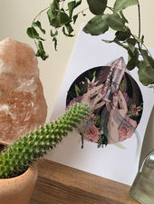 Rose Quartz | Giclée Print - Felicity & Ink