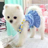 Dog Dress Mini Blue Grid Sun Lace Skirt Spring Summer Dog Clothes For Small Dog Party Dog Skirt Puppy Pet Costume Pets Outfits