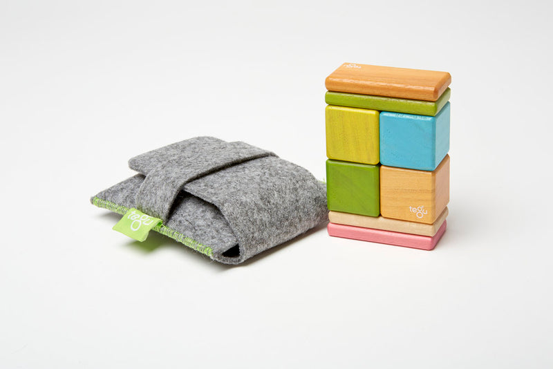 Tegu Tints 8 Piece Pocket Pouch