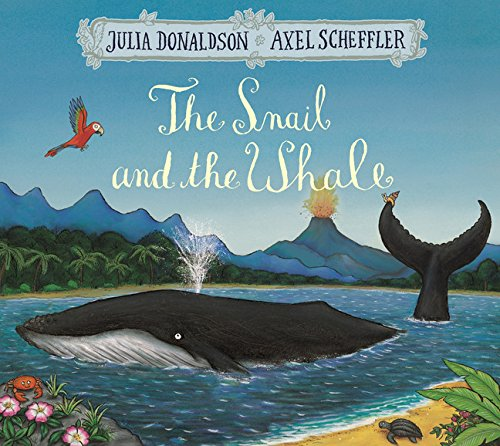 Snail And The Whale (Pb) Book