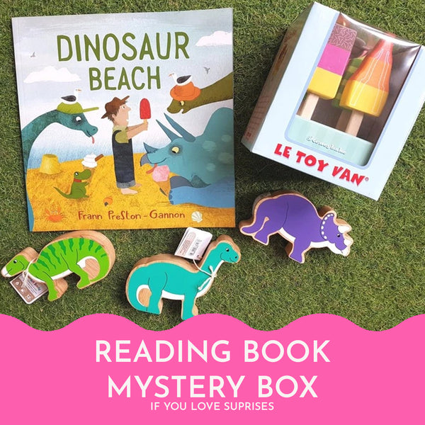 The Reading Book Mystery Box