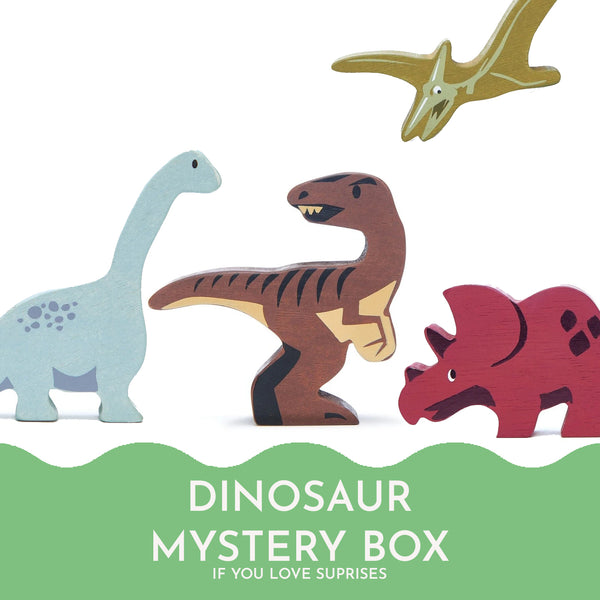 The Dinosaur Mystery Box