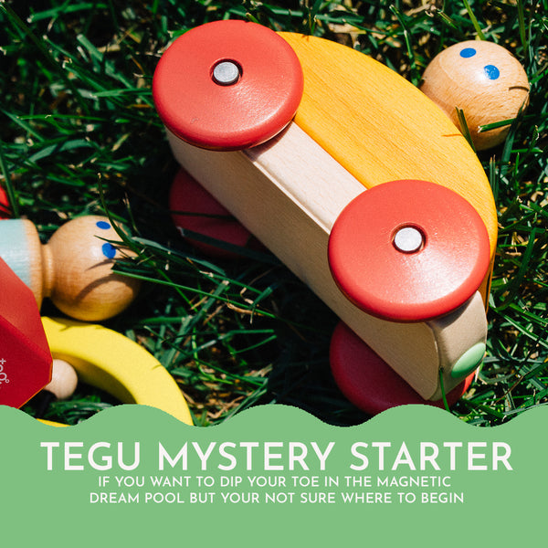 The Tegu Mystery Starter Set