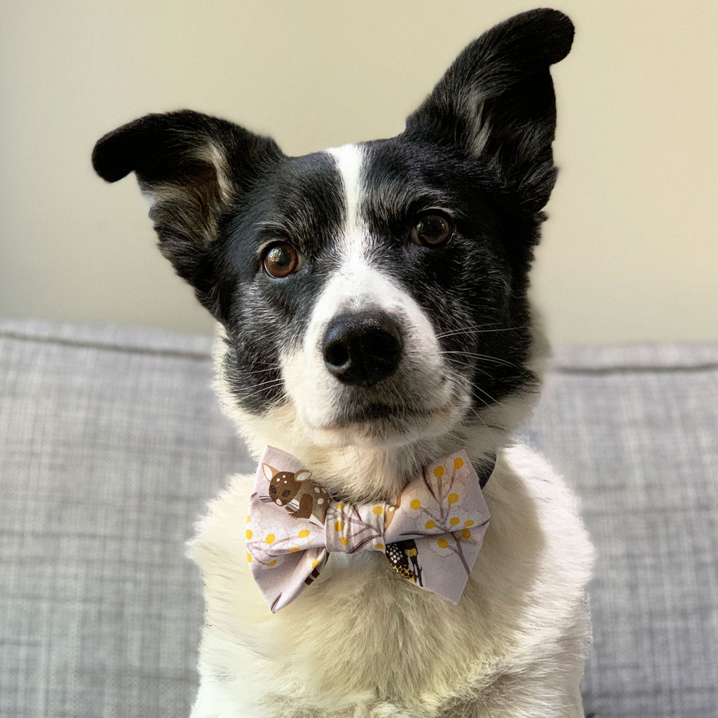 Aussie Animals - Bow Tie - The Sophisticated Pet